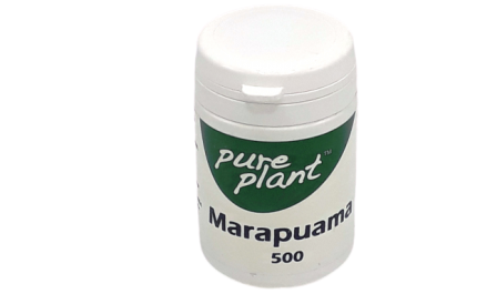 Marapuama Kps 500mg Pure Plant