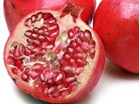 Granatapfelkern Oel Bio 20ml