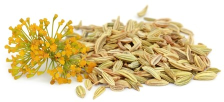 Fennel seeds oil PREMIUM Organic